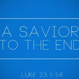A Savior to the End