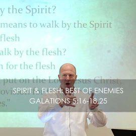 Spirit & Flesh: Best of Enemies