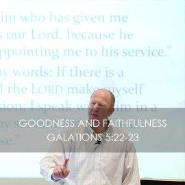 Goodness and Faithfulness
