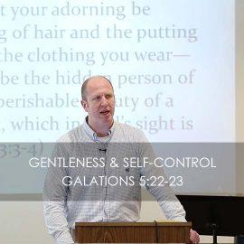 Gentleness & Self-control